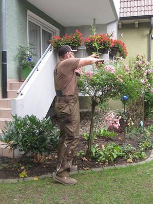 Garten und Landschaftsbau Hamm Melbert Gartenpflege Rasenmähen Hausmeisterdienste